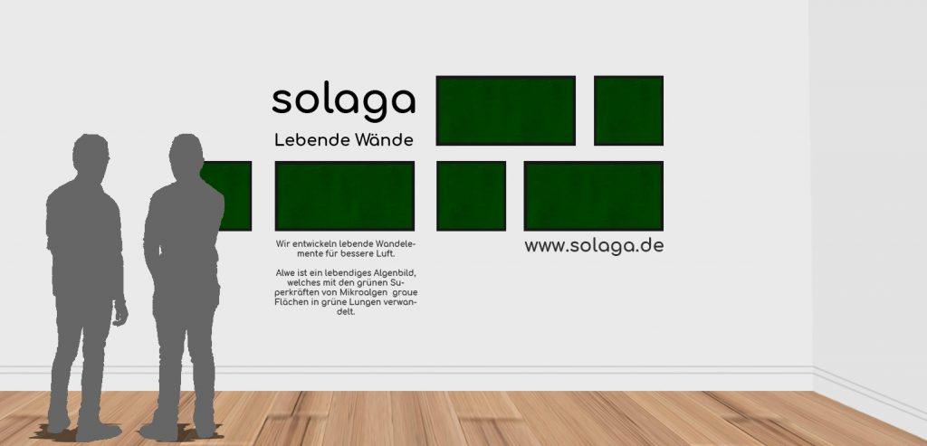 Solaga- Das Algenbild