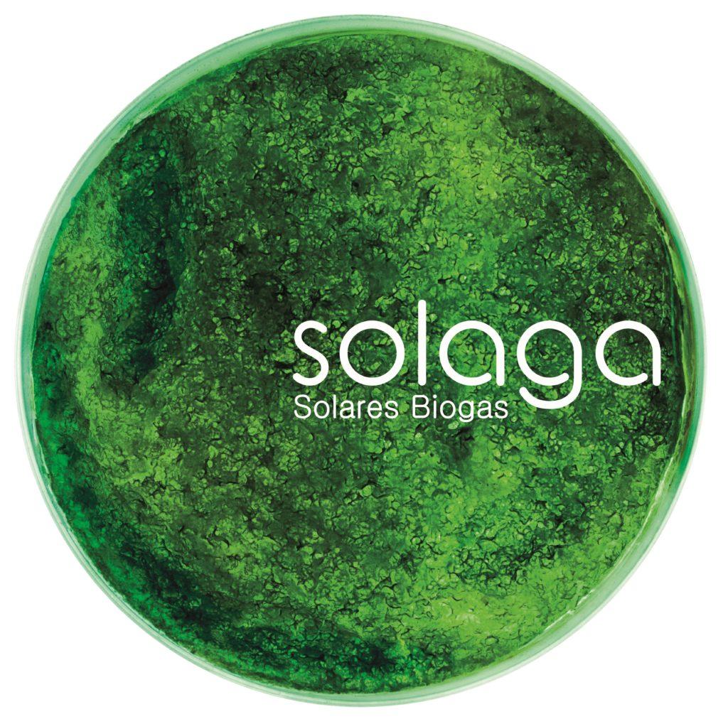 Wasserstoffproduktion mit Algen
