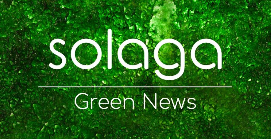 grüne Nachrichten