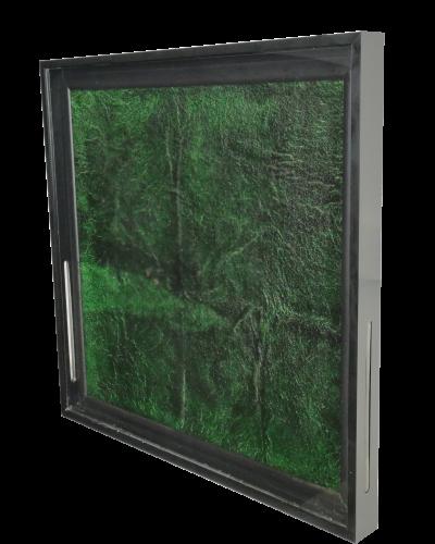 Algenbild biologischer Luftreiniger
